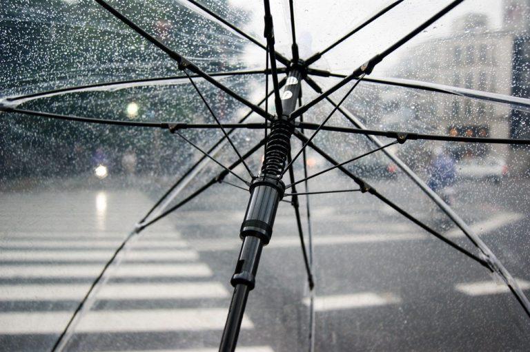 折り畳み 傘 ケース なく した