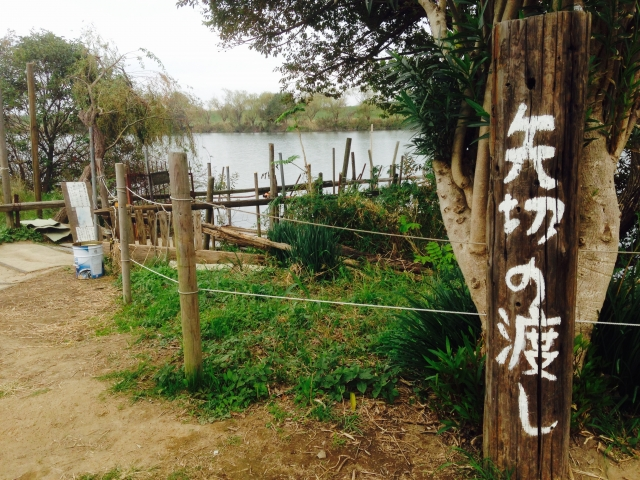 矢切神社 初詣